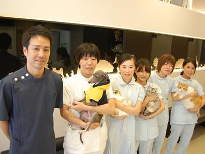 獣医師&動物看護師